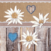 Guardanapo-Decoupage-Ambiente-Edelweiss-on-Wood-13314445-2-unidades
