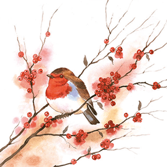 Guardanapo-Decoupage-Ambiente-Birdy-Robin-33304435-2-unidades