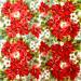 Guardanapo-Decoupage-Ambiente-Natal-Pointsettia-All-Over-33313570-2-unidades