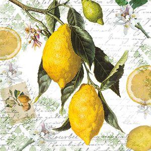 Guardanapo-Decoupage-Ambiente-Lemon-13314990-2-unidades