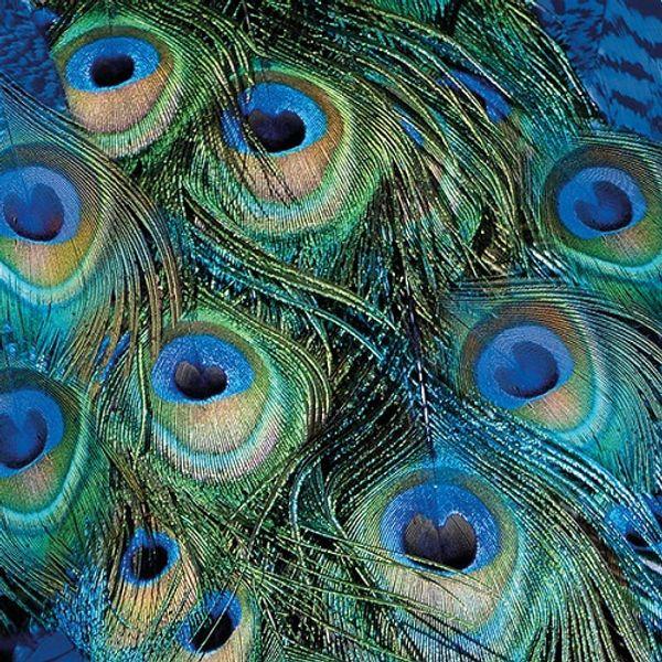 Guardanapo-Decoupage-Ambiente-Peacock-Feathers-13315025-2-unidades