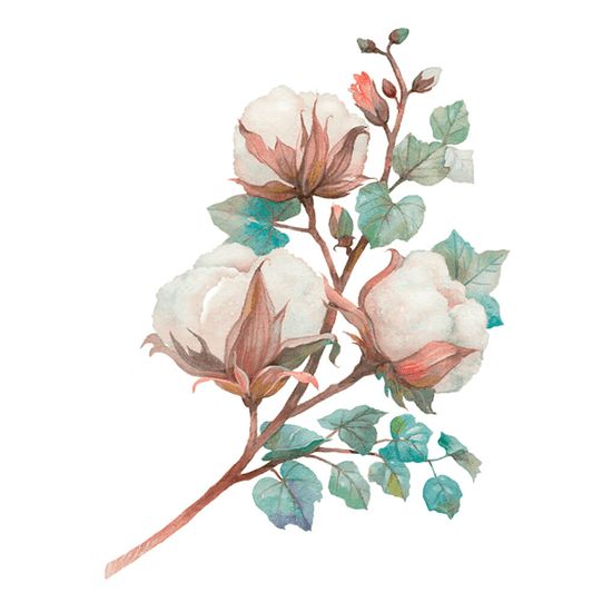 Aplique-Papel-Decoupage-em-Mdf-Litoarte-8cm-APM8-1307-Guirlanda-de-Magnolias