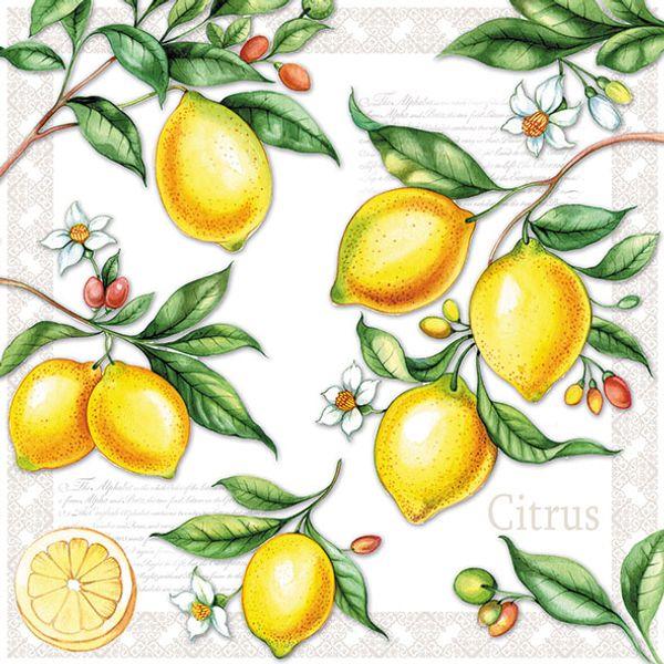 Guardanapo-Decoupage-Ambiente-Citrus-13311520-2-unidades