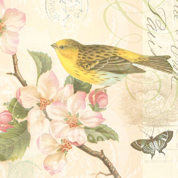 Guardanapo-Decoupage-Ambiente-Bird-and-Blossom-13305890-2-unidades