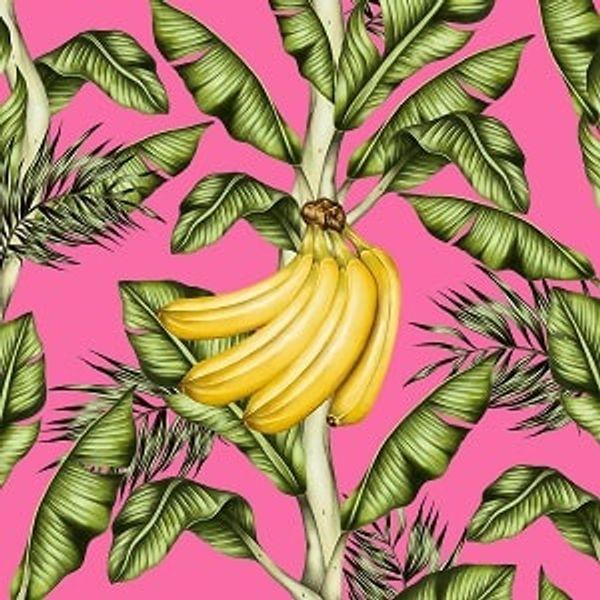 Guardanapo-Decoupage-Ambiente-Go-Bananas-1333172-2-unidades