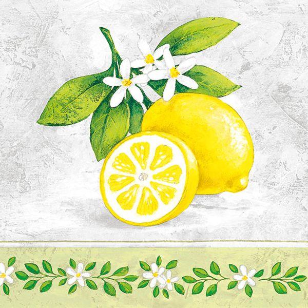 Guardanapo-Decoupage-Ambiente-13309695-Lemon-Branch-2-unidades