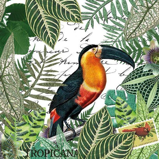 Guardanapo-Decoupage-Ambiente-13313965-Tropicana-2-unidades