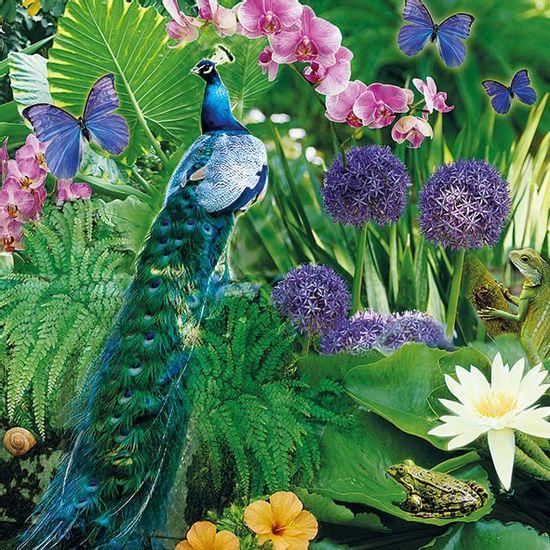 Guardanapo-Decoupage-Ambiente-13314095-Blue-Peacock-2-unidades