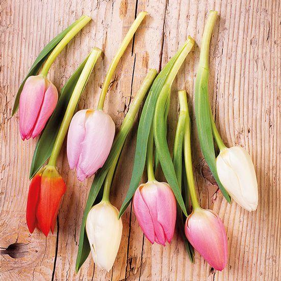 Guardanapo-Decoupage-Ambiente-13314870-Tulips-On-Wood-Blue-2-unidades