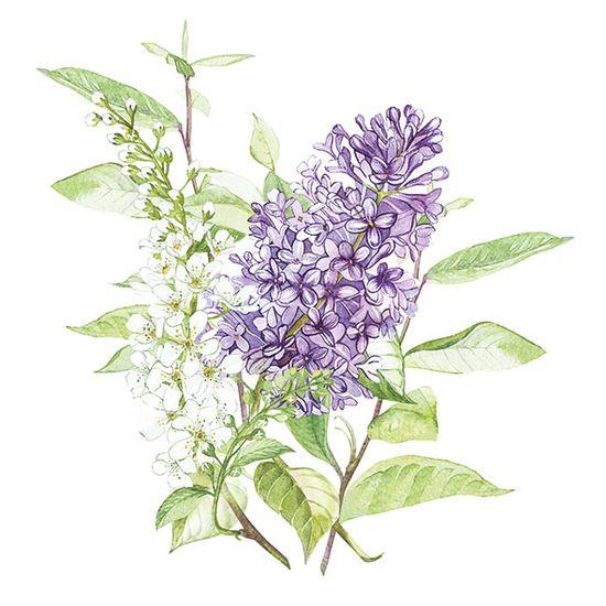 Guardanapo-Decoupage-Ambiente-13314900-Lilac-White-2-unidades