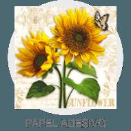 Decoupage - Papel Adesivo