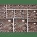 Papel-Decoupage-Litocart-34x48cm-LD-787-Feijao