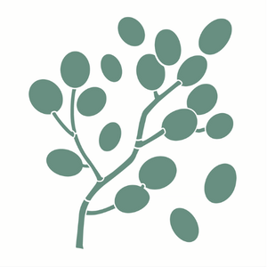Stencil-Opa-305x305-3123-Organico-Folhas-Bolinhas