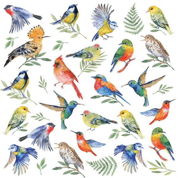Guardanapo-Decoupage-Ambiente-13311825-BIRDS-VOTES-2-unidades